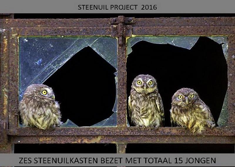 Copyright Ernst Dirksen
